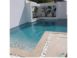 شركة تنفيذ مسابح (احواض سباحة في الامارات ) وتنسيق الحدائق