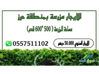 للايجار مزرعة بمنطقة حرز