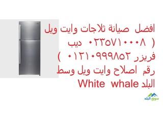 صيانة وايت ويل الورديان الاسكندرية 01283377353