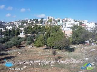 ارض للبيع في السلط/ اسكان الفردوس - قرب مسجد الفردوس